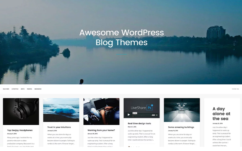 The_best_Premium_WordPress_blog_themes